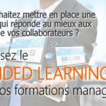 formation-blended-learning-management